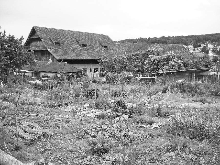 Die Weinegg ist der letzte Bauernhof in der Stadt Zürich und steht im Kreis 8. Bild: Roland zh / Wikicommons