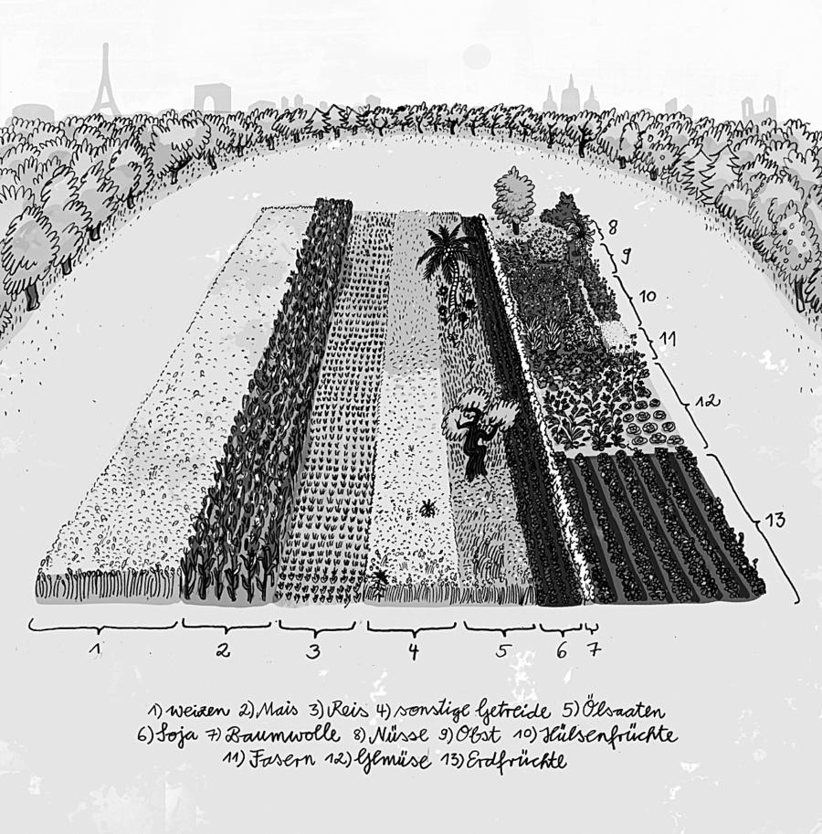 Die Illustration zeigt, zu welchen Teile welche Kulturen weltweit angebaut werden.